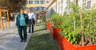 Iskolakert a Gothardban – Fűszernövényt, tököt és babot is ültettek a diákok a magaságyásokba – fotók