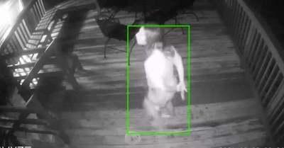 Sokkot kapott a házaspár, amikor meglátták, mit rögzített éjszaka a biztonsági kamera