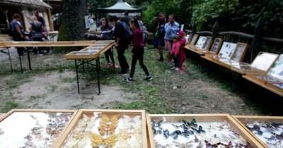Családi pikniket tartottak Lengyel-Annafürdőn