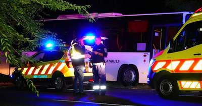 Életét vesztette a buszvezető, amikor fának ütközött Kecskeméten