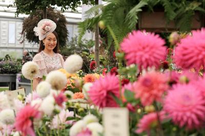 1 év kihagyás után újra megnyitotta kapuit a Chelsea Flower Show - fotógaléria