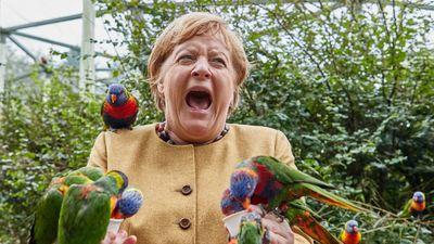 Merkel szolgáltatta a hónap fotóját