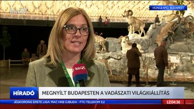 Megnyílt Budapesten a Vadászati Világkiállítás
