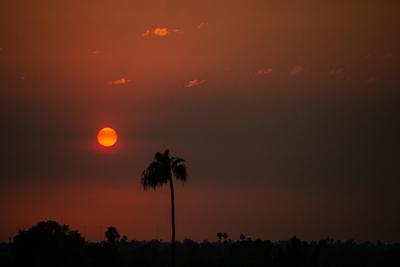 Rémisztő gazdasági károkat okoz az extrém, halálos hőség