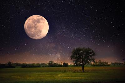 Heti holdnaptár (szeptember 27 - október 3.): Most feleslegesen kergetjük az aktuális álmokat