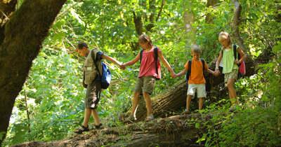 5 tipp arra, mit szerezz be, ha a természetjárás az új szenvedélyed