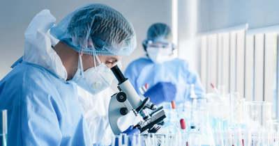 Magyar kutatók tehetik elviselhetőbbé a betegségeket és a sérüléseket