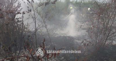 Kétszáz négyzetméteren égett az elszáradt növényzet Sarkadon