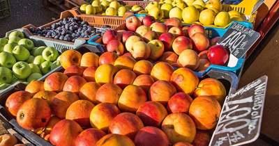 Kedvelt almafajták – 2.rész