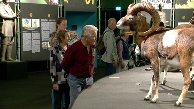 Hömpölygő tömegek a vadászati kiállításon