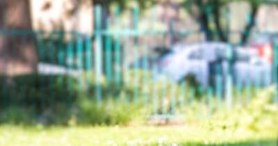 Bedrogozott tinibanda támadt rá egy mozgássérült fiúra és barátnőjére Józsefvárosban