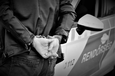 Kiugrott a kocsiból, átugrott a szalagkorláton, és átmászott a vadfogó hálón egy férfi az M5-ösön: ezért üldözték a rendőrök
