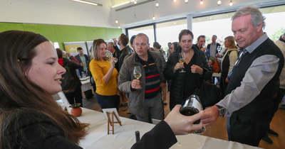 Tarolnak a somlói borok a piacon és a turizmusban