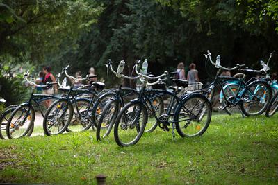 Bringázás a Duna mellett: A Budapest-Szob kerékpárút felfedezése