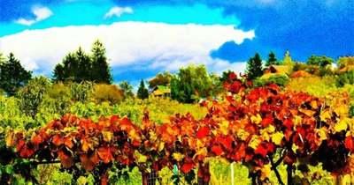 Az ősz ecsetvonásai