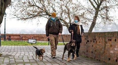 Áll a bál a Vár környékén: Miért nem képesek pórázon sétáltatni a gazdik a kutyáikat?!