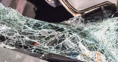 Tragikus baleset az M1-esen – Több jármű ütközött, öten a helyszínen meghaltak