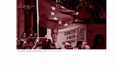 Nemzetközi segítség a magyar baloldalnak