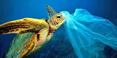 Mikroműanyagok mindenhol: Az lesz a vége, hogy műanyagot fogunk enni?