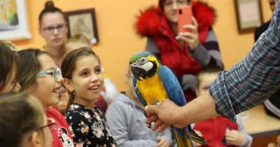Papagáj köszöntötte a gyerekeket Mezőcsokonyán