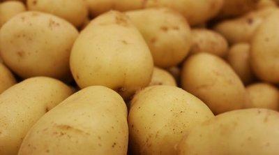 Csak egy hozzávalót cserélj ki: Ettől lesz hibátlan a krumplipüré