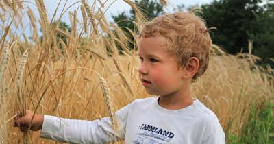 Az agráröröklés legfontosabb szabályai