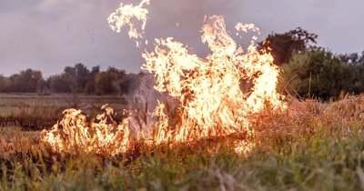 Száraz fű gyulladt meg Tiszasülyön, egy épület is lángolt