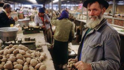 Krumpliparadicsom: erős brand a székely pityóka