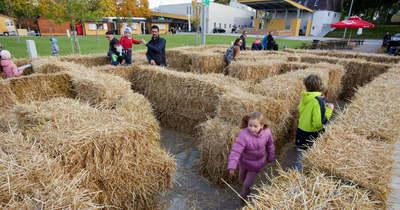 Az ország legnagyobb szalmabála-labirintusával együtt tök jó programokat kínál Zalakaros az őszi szünetre