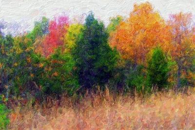 Az október még színesebb, mint a szeptember: miért ne festhetnéd le?