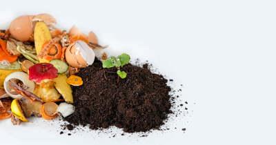 Zöldségekkel is harcolhatunk a klímaváltozás ellen
