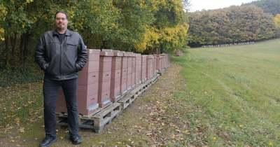 Súlyos károkat okoz a mézhamisítás