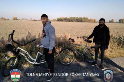 Kerékpáros migránsok Alsónyék térségében