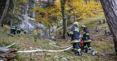 Tovább tombol az erdőtűz Ausztriában, a magyar határ közelében – A szél is nehezíti az oltást – fotók