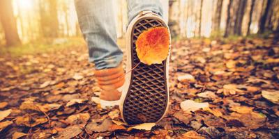 Mozdulj ki és sétálj – elvégre az ősz még nem a tél!