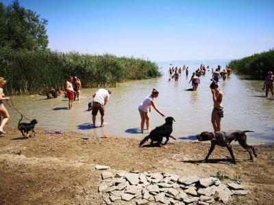 50-nél is több szabadstrand van a Balaton körül - mutatjuk hol!