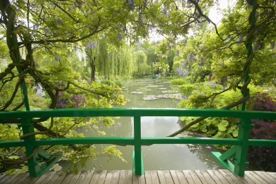 Dzsungel a városban – Négy csodás európai botanikus kertet mutatunk