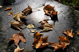 Borúsabb arcát mutatja jövő héten az ősz