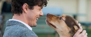 Tündéri kutyusos filmmel indítják a mozik a jövő évet (videó)