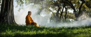 Leopárd ölt meg egy meditáló buddhista szerzetest