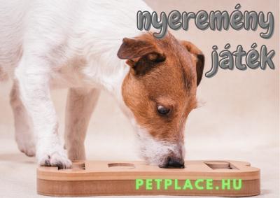 5x20.000 forintot nyerhetsz egy lépésben a PetPlace-en!