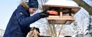 Életmentő lehet a madarak téli etetése