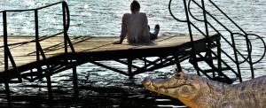 """""""Láttam a sunyi pofáját"""" – krokodil napozott a Deseda tó partján"""
