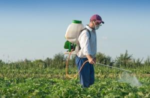 """A megengedettnél több vegyszert használhatnak az """"amatőr"""" kertészek"""