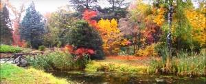Ahogy még nem látta – Ősz a Kámoni Arborétumban