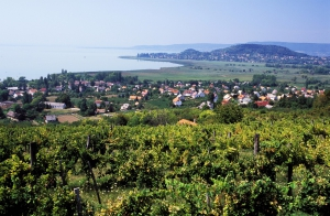 Ennyi pénzért lehet venni nyaralót a Balatonon