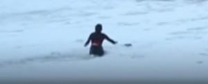 Óriási jeges hullámok közül mentette ki kedvencét (videó)