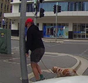 Bemutatott egy autósnak, aztán nekiment a lámpaoszlopnak (videó)