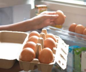 Tényleg hipózni kell a tojást? íme a Nébih álláspontja!