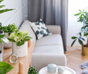 Ez a 7 legegészségtelenebb otthoni szokás a karantén alatt